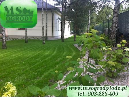 Ogrody Łodz - MS Ogrody Łodz - firma ogrodnicza w Łodzi 10