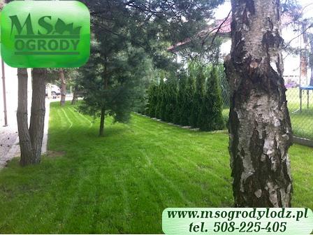 Ogrody Łodz - MS Ogrody Łodz - firma ogrodnicza w Łodzi 8